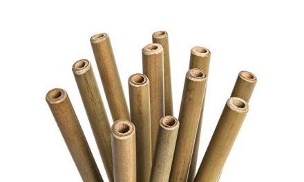 Pailles bambou réutilisables