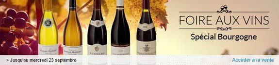 vente privee foire aux vins bourgogne
