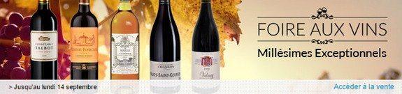 vente privee foire aux vins millesimes exceptionnels